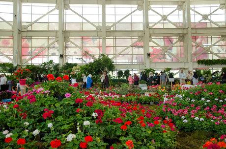 سه دهم درصد گلخانه های جهان در ایران قرار دارد