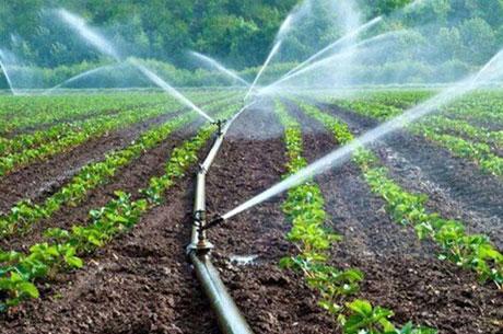 آبیاری نوین/ صرفه جویی در آب و هزینه ها